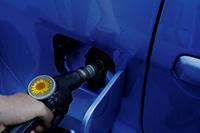 Mangera_biocarburantes.jpg
