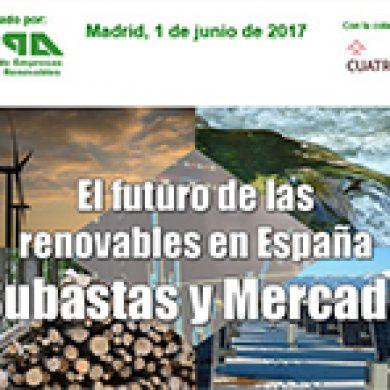 AVANCE – JORNADA APPA – EL FUTURO DE LAS RENOVABLES EN ESPAÑA, ¿SUBASTAS Y MERCADO?