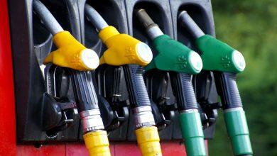 La Comisión Europea prevé que los biocarburantes sigan siendo en 2030 la energía alternativa en el transporte