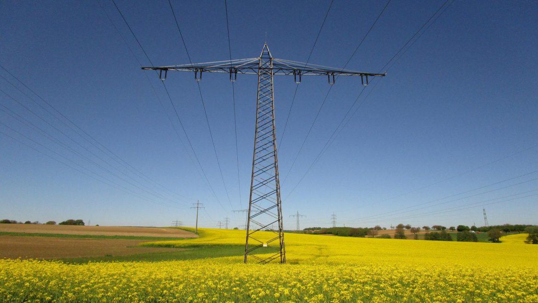 APPA Biocarburantes solicita al MINETUR la prórroga del reparto de producción de biodiésel