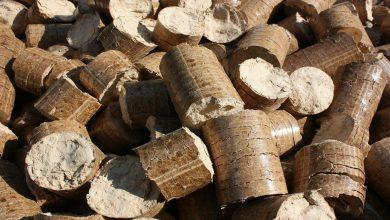 La Biomasa nacional podría incrementar su producción eléctrica un 23%