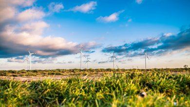 APPA Renovables considera un grave error del Ministerio enfrentar las tecnologías renovables en la subasta