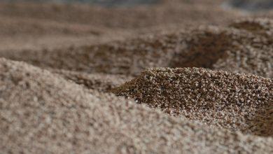 APPA Biomasa reclama 645 nuevos MW para cumplir los objetivos a 2020