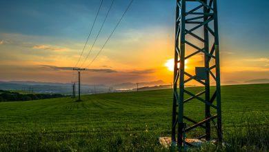 APPA denuncia precipitación en la subasta de Energía y pide un desarrollo racional del sector