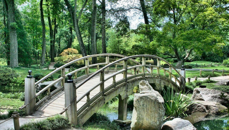 Puente-Japones.jpg