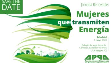 Jornada APPA – Mujeres que Transmiten Energía 2020