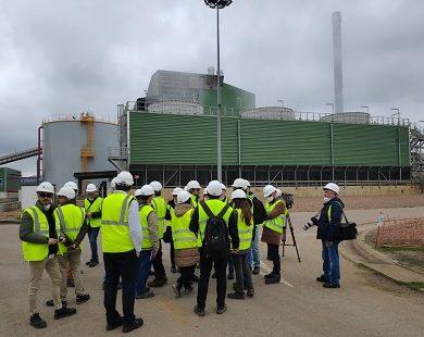La biomasa, fundamental para que la Transición Ecológica sea justa