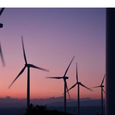 Perspectivas mundiales de las Energías Renovables. Transformación Energética de aquí a 2050