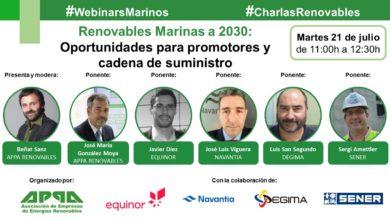 Renovables Marinas a 2030: Promotores y Cadena de Suministro