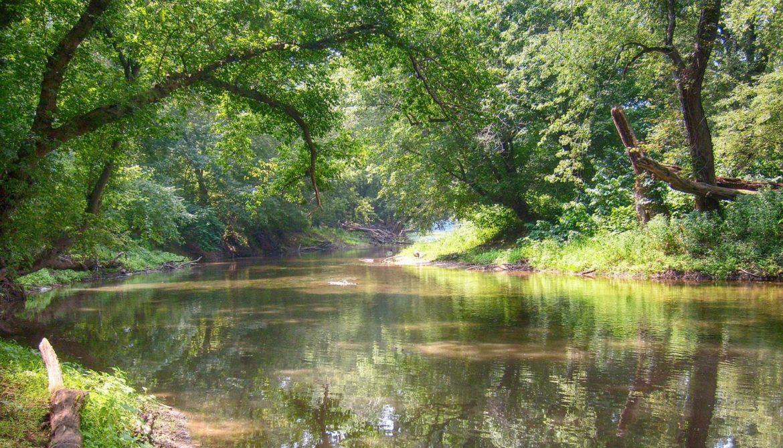 PIXABAY-river-2700909_1920-e1602165727274.jpg