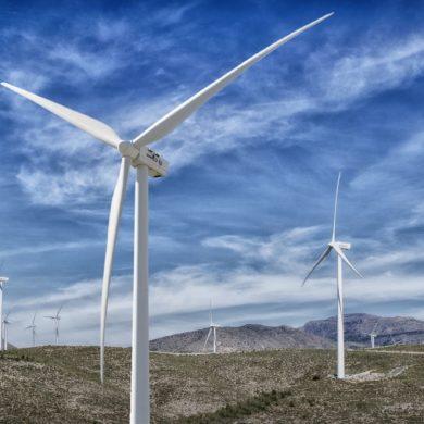 APPA Renovables aplaude la celebración de la primera subasta renovable de 2021 que constata la competitividad alcanzada