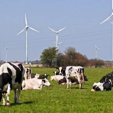 El 74% de la electricidad renovable en 2030 solo se alcanzará combinando todo tipo de instalaciones
